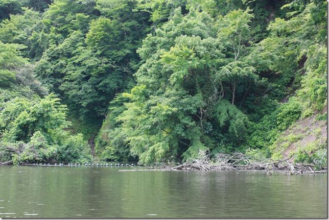 亀山ダムがけ崩れ