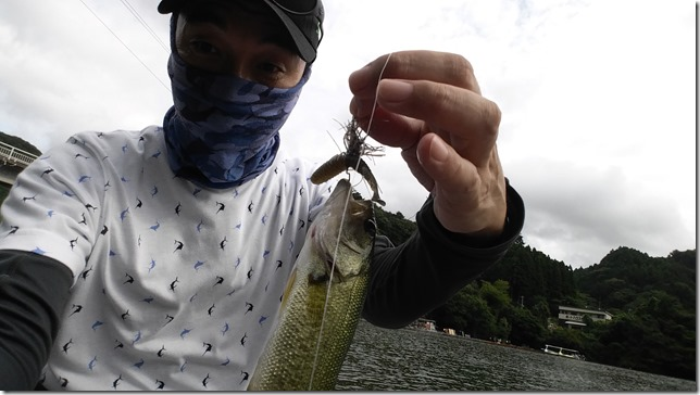 ベイトフィネスジグ亀山湖
