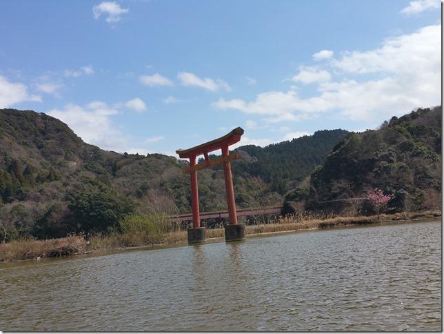 亀山湖早春
