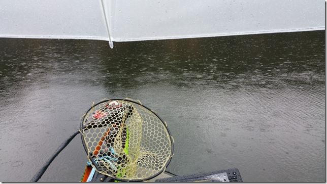 雨の日のバス釣り