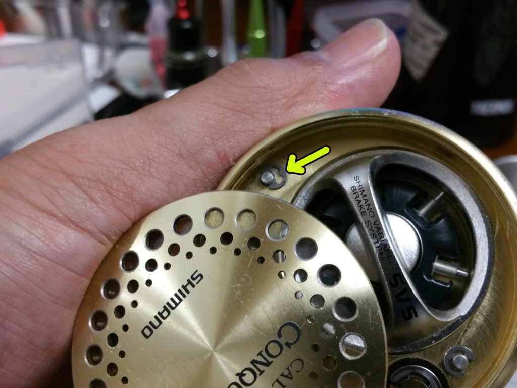 SHIMANO01CALCUTTA CONQUEST-1