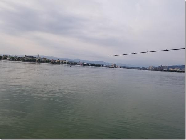 琵琶湖の沖のウィード