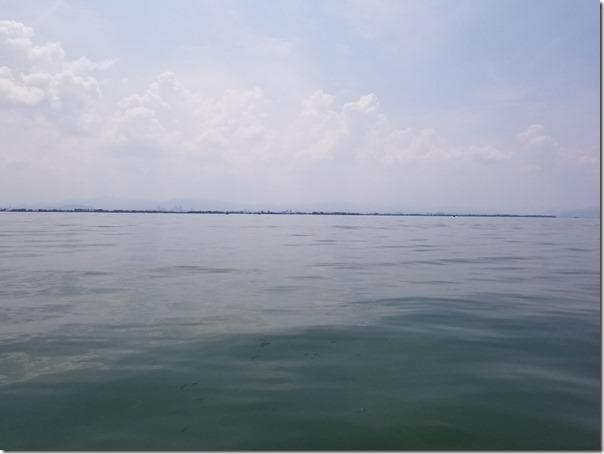 ベタナギの琵琶湖