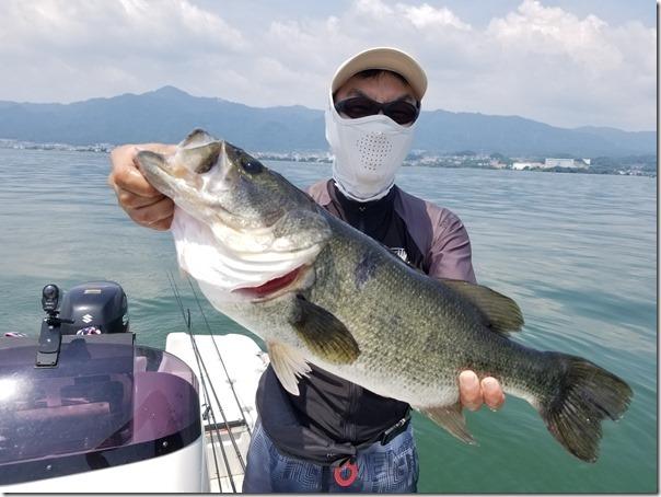 琵琶湖のビッグバス