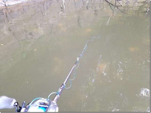 mishimadam-bassfishing (27)