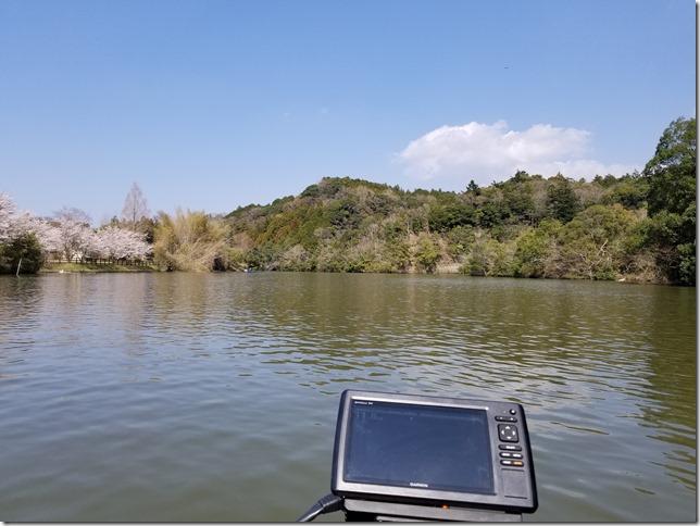 春の亀山ダム