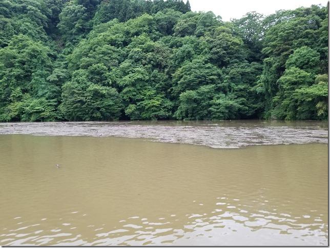 亀山ダムつばきもとボート前の水の色