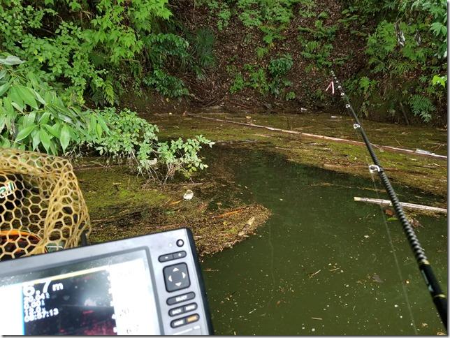 亀山ダムの岩盤浮きゴミ