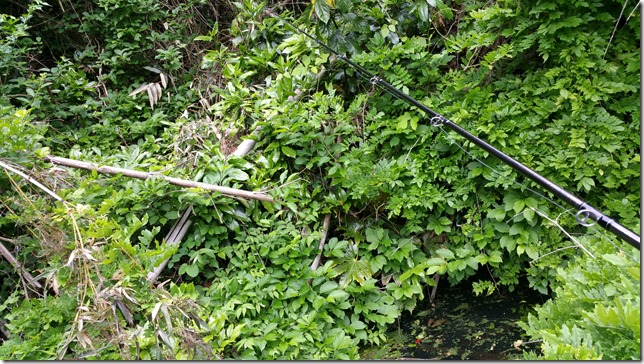 亀山ダムのヘビーカバーにフリップ